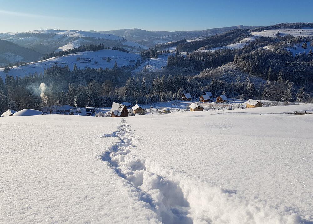 Sneg-in-statti