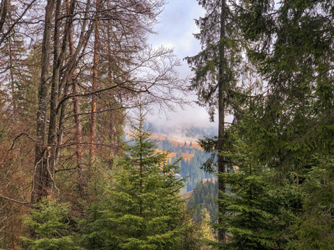 panorama_khutir_tykhyi