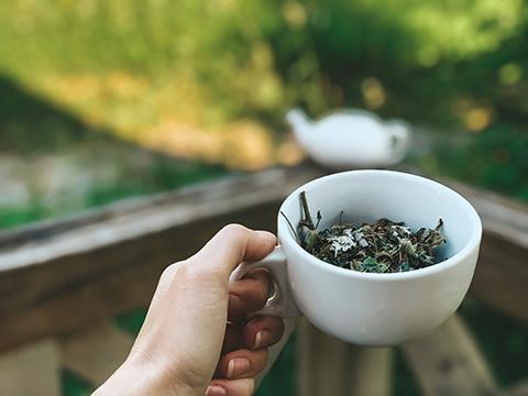tea_khutirtykhyi
